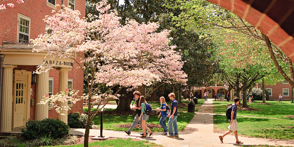 Spring blossoms outside of Bostwick hall