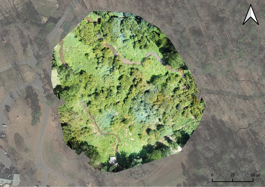 An orthomosaic of Lake Katharine collected from a drone