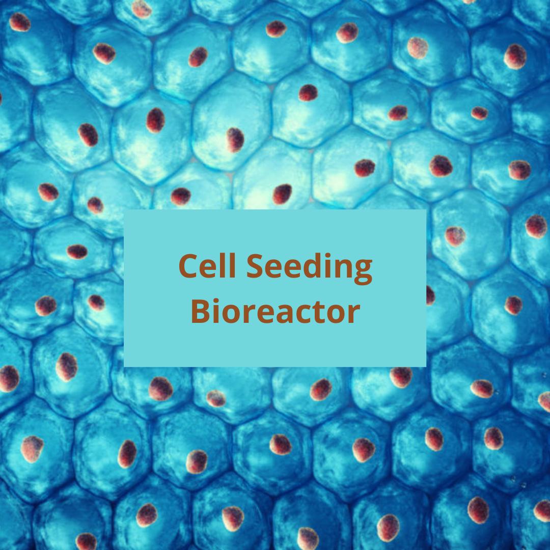 Cell Seeding Bioreactor
