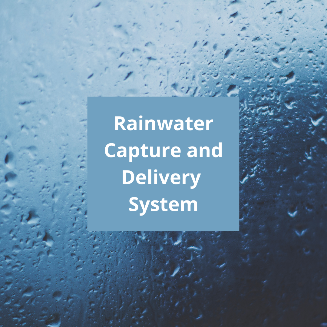 rainwater capture and delivery system