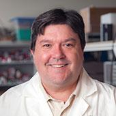 Profile picture for Prof. David Carroll