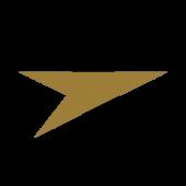 lc profile image