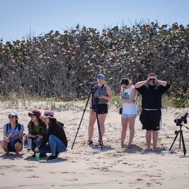 students watch birds on beach
