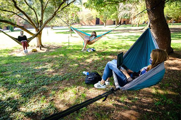 Students studying in hammocks