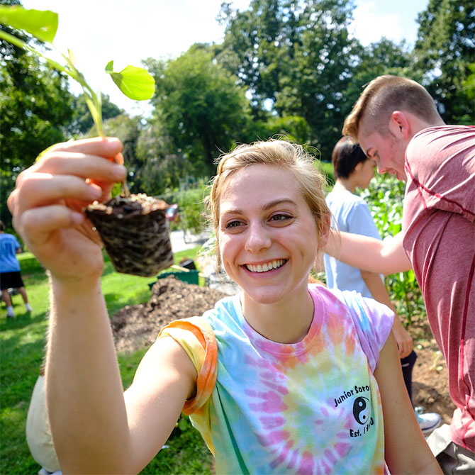 Wake Forest first year students in the SPARC pre-orientation group work in the campus garden