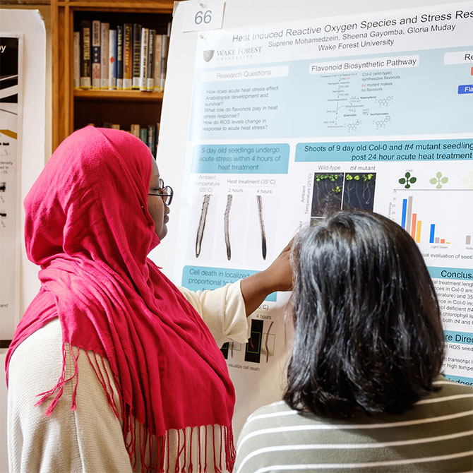 Wake Forest students show the results of their research projects during Undergraduate Research Day.