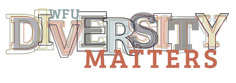 Diversity Matters Graphic