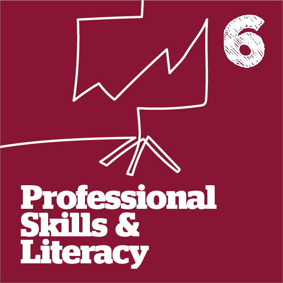 professional skills and literacy graphic