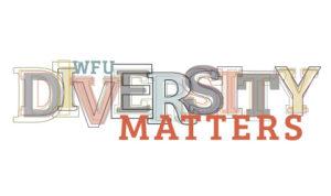 Colorful Diversity Matters Logo