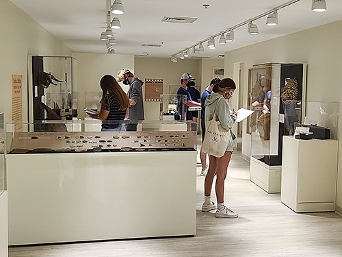 students in the museum