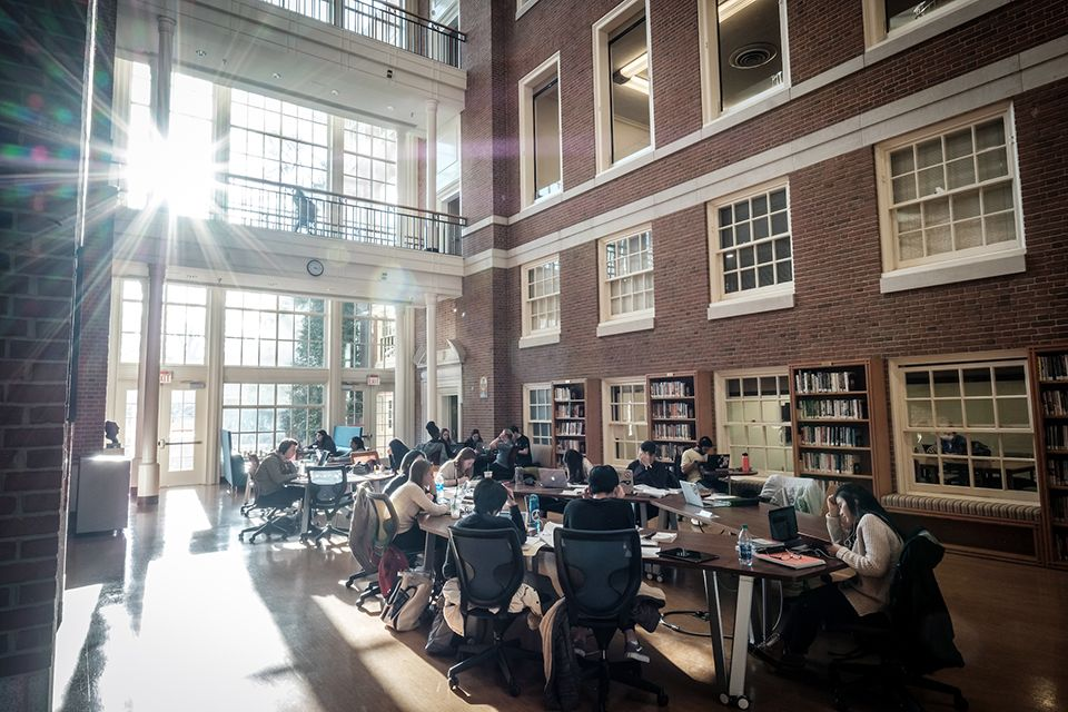Students studying in ZSR Library