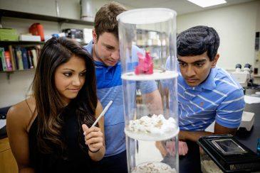 Sumi Mahajan ('16), Andrew Barth ('16), and Chirag Patel ('16)