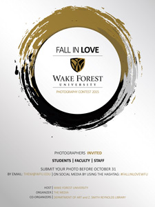 Fall in Love poster