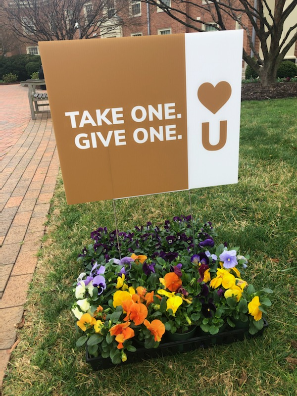 "Photo of flower pots on the Wake Forest University quad with a yard sign that says ""Take one. Give one."" and the Show Humanitate ""Heart U"" logo"