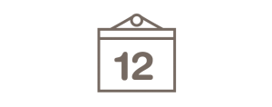 12-Month Review Icon