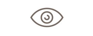 Lenses Icon