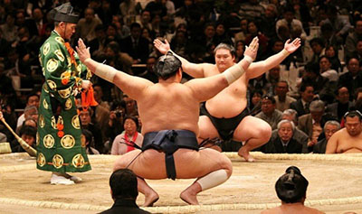 Pre-Season Sumo 101: Who's in the Ring?