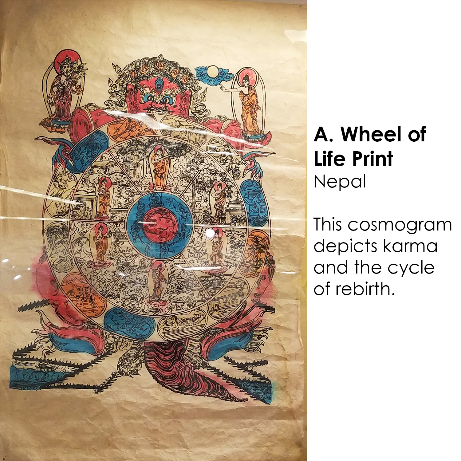 Buddhist Wheel of Life Print from Nepal