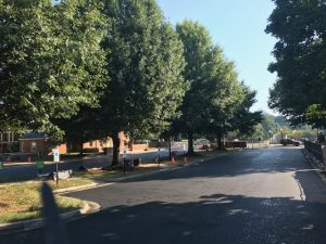 Freshly paved parking lot near Poteat and Kitchin halls