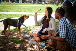 Wake Forest students enjoy a Rent a Puppy event on Manchester Plaza as they take a short study break on Tuesday, March 15, 2016. First year students Jay Thompson and Amy Lerro play with a young hound.