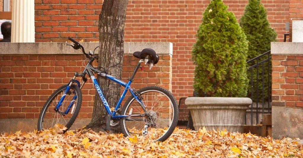 Bicylcle Registration