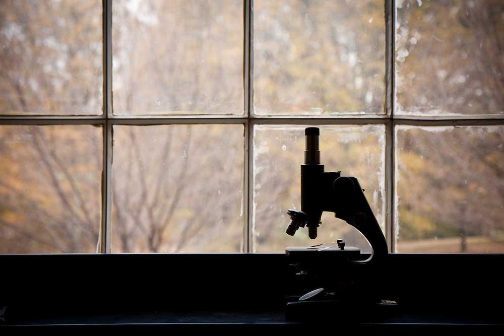Microscope in a biology lab