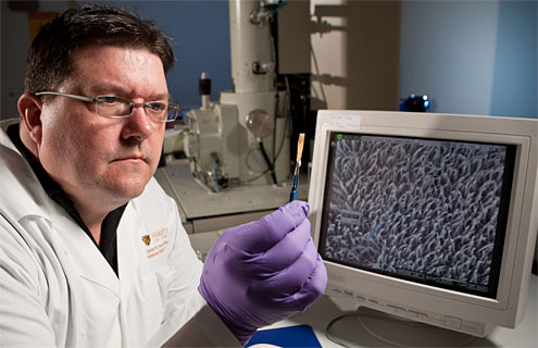 David Carroll is director of Wake Forest's Center for Nanotechnology and Molecular Materials, which has developed a more efficient and less expensive fiber solar cell.