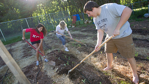 Wake Forest students gardening