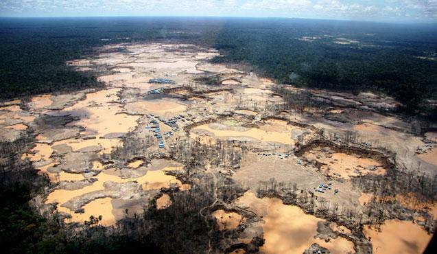 Amazon rainforest destruction