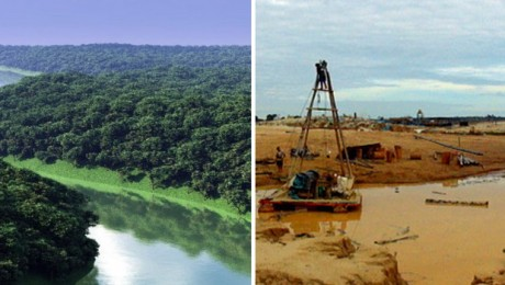 Deforestation, before and after.