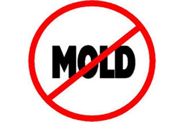 Stop Mold