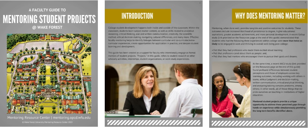 Thumbnail image of the Faculty Guide to Mentoring Student Projects