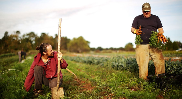 Isaac Oliver (left) and his father, Kevin, harvest carrots at Harmony Ridge Farm.